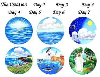 Creation Story | My Storybook