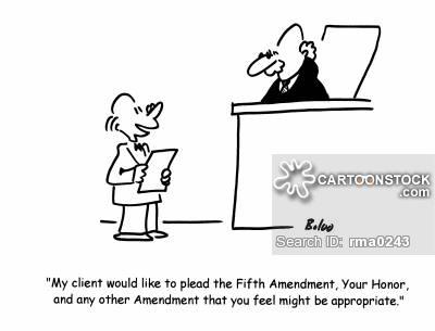 the 5th amendment my storybook