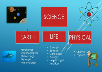 My First science assessment:   My Storybook