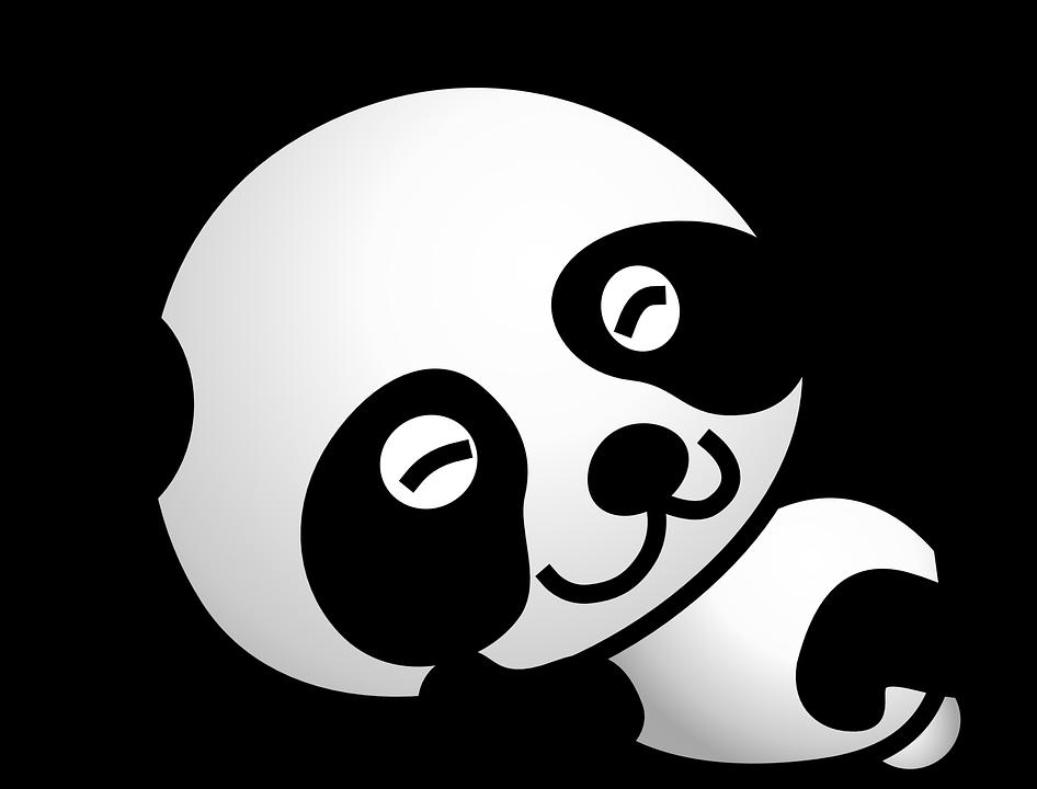 Delilah the Panda  My Storybook