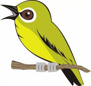 Gambar Kartun Burung Pleci Lucu